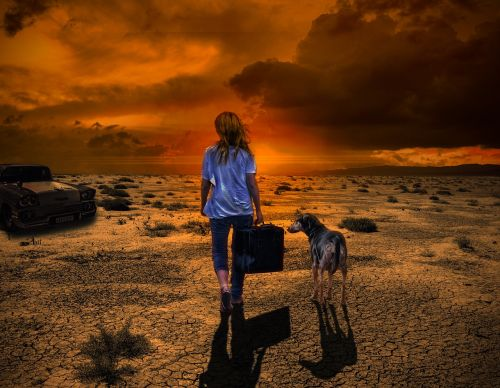 departure woman dog
