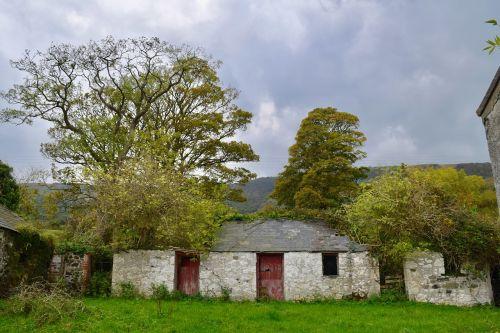derelict farmyard autumn trees