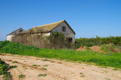Derelict House In The Country