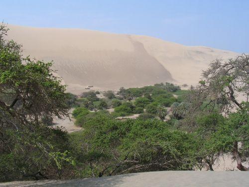 desert peru oasis