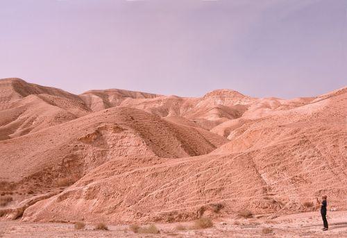 desert israel roche