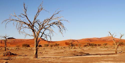 desert namibia dunes