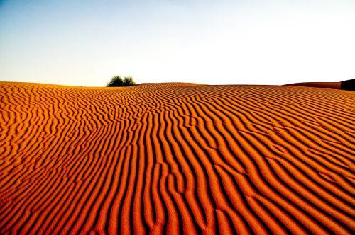 dykuma,kraštovaizdis,gamta,dykumos kraštovaizdis,kelionė,smėlis,turizmas,gražus,peizažai,sausas,raudona,sausas,šiluma,gamtos kraštovaizdis,modeliai
