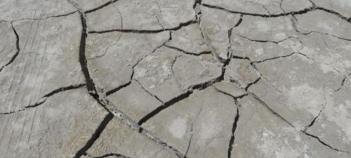 desert earth cracks
