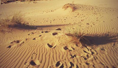 desert fingerprint sardinia