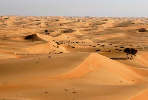 desert landscape drought