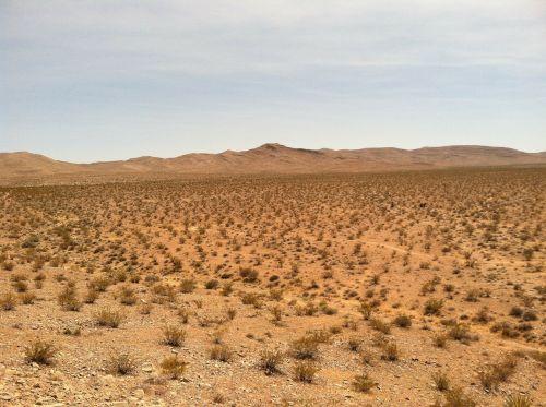 dykuma,sausas,smėlis,kraštovaizdis,dykuma,peizažas,natūralus,laukiniai,lauke,aplinka,vaizdingas,gamta,žemė