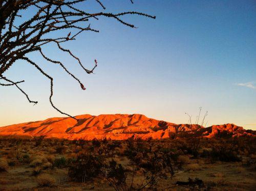 desert sunrise sunrise sky