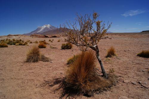 desert bolivia landscape