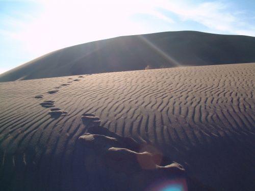 desert footprints sand