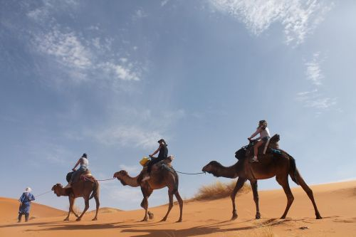 desert sahara sand