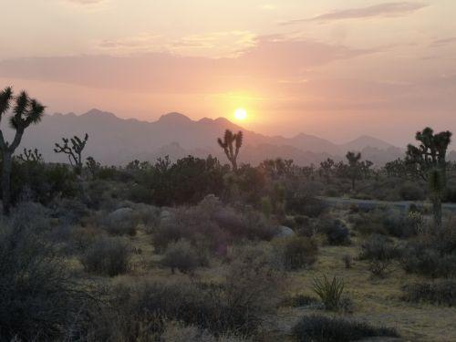 desert sunset abendstimmung
