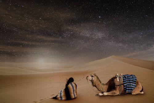 desert night starry sky