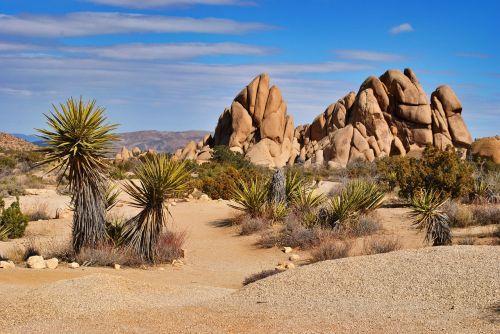 desert sand dry