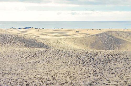 desert  sea  sand