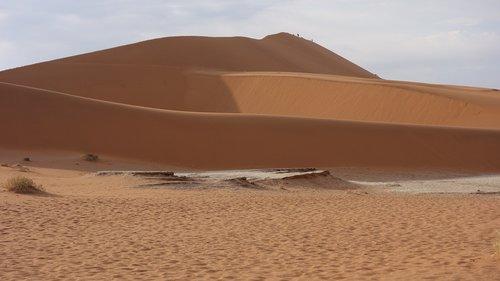 desert  namib  sand