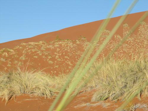 dykuma,namib,Namibija,kraštovaizdis,smėlis,Sossusvlei