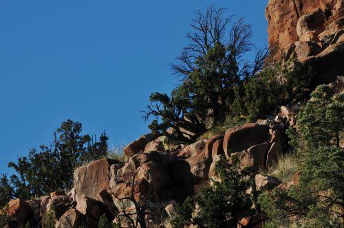 Desert Rocks And Brush