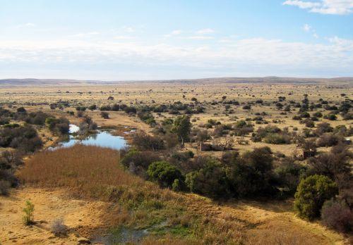 Deserted Wilderness Area
