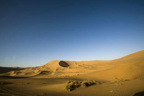 desolate,dykuma,badanjilinas