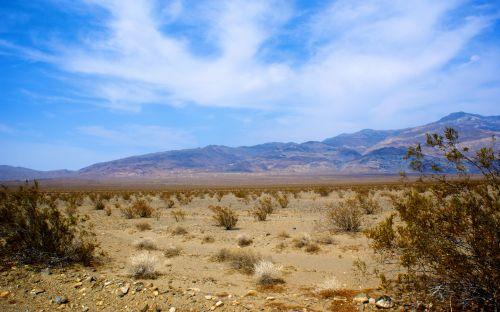 Desolation Of Mojave Desert