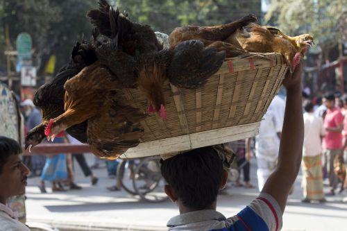 dhaka bangladesh streets