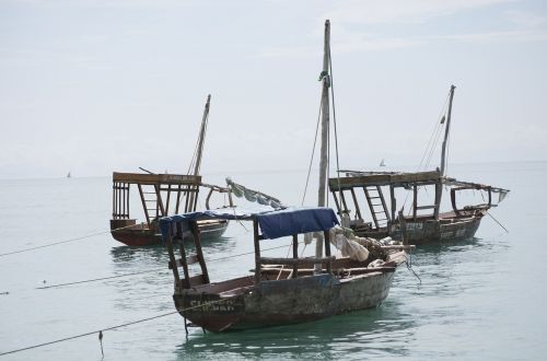 dhow boats tanzania africa
