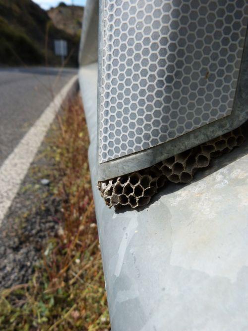 diaper wasp guardarail