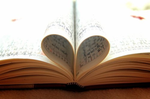 diary  benefits  record