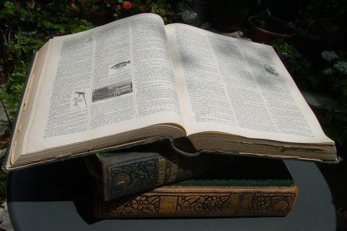 dictionary 20th century larousse