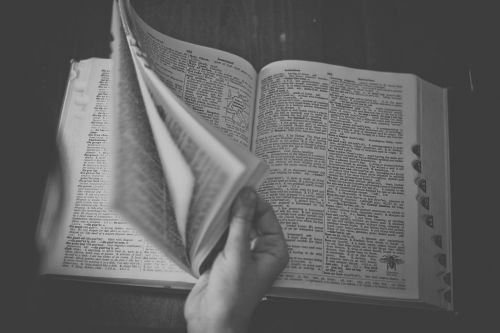 dictionary book reading