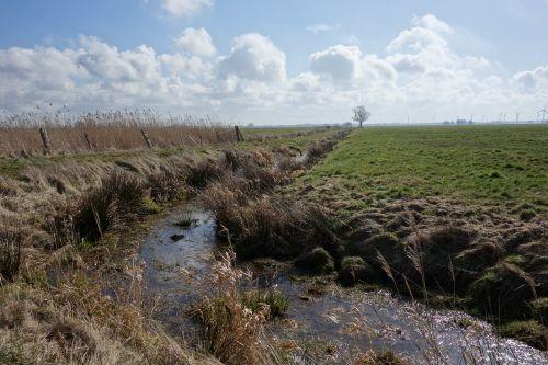 dig water pasture