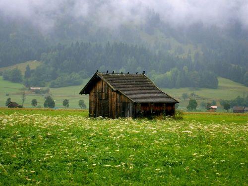 dig crow old barn