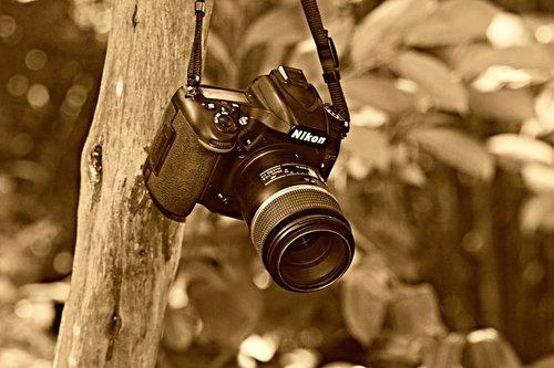digital camera  photography  technology