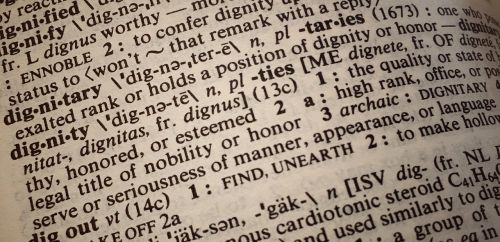 dignity definition dictionary