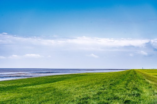 dike  north sea  dorum