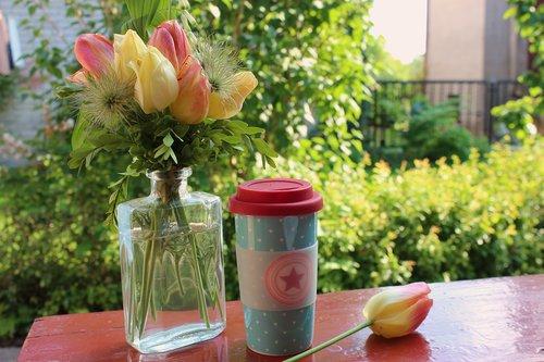 dining table  mug  coffee
