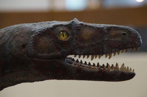 dino dinosaur lizard