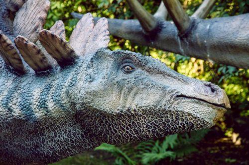 dinopark dinosaur stegosaurus