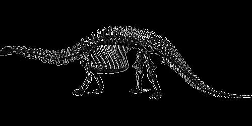 dinosaur fossil paleontology