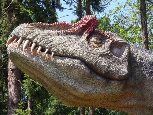 dinosaur head teeth