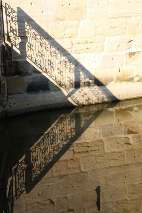 dinosaur mirroring bridge