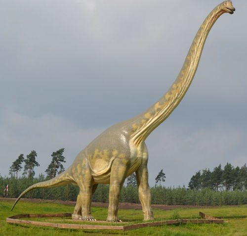 dinosaur brontosaurus sauropods
