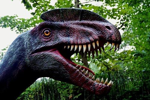 dinosaur  dino  dino-park
