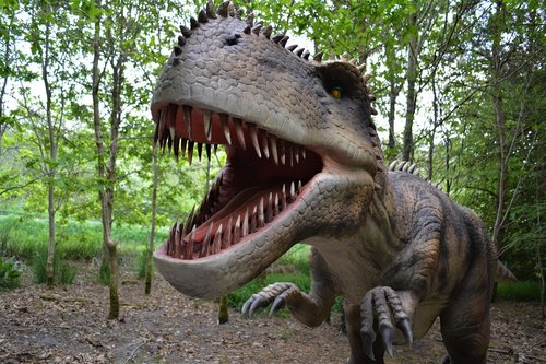dinosaur  dino  carnivorous dinosaurs
