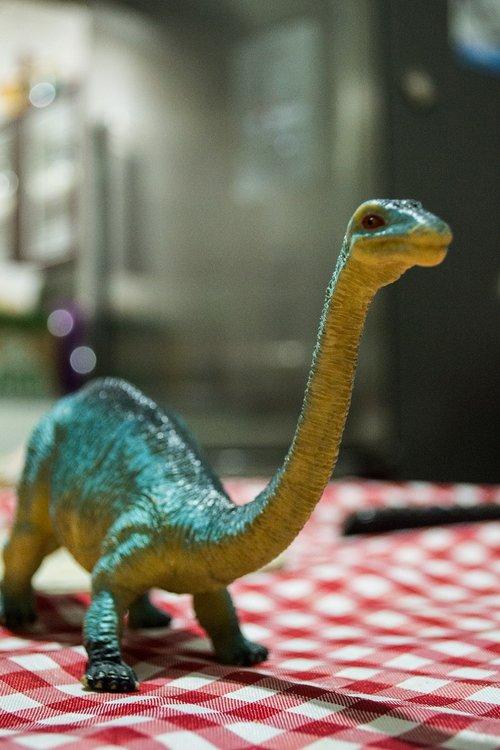 dinosaur  toy  reptile
