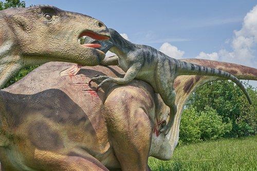 dinosaur  veloziraptor  carnivores