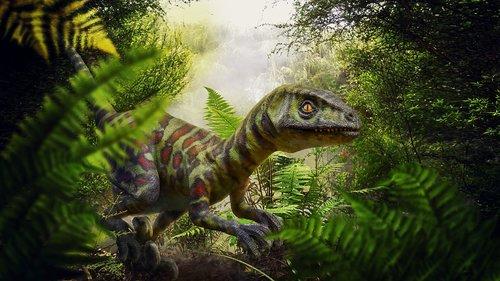 dinosaur  raptor  jungle
