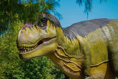 dinosaur  t-rex  predator