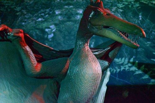 dinosaur  dino  prehistory